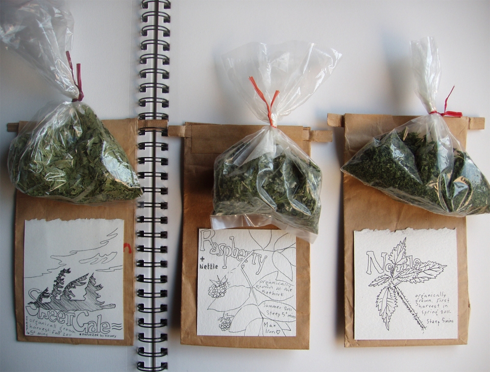 three bags of tea, gathered and dried, illustrated brown bags